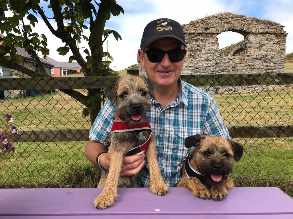 Puppies enjoying Welsh break Featured Image