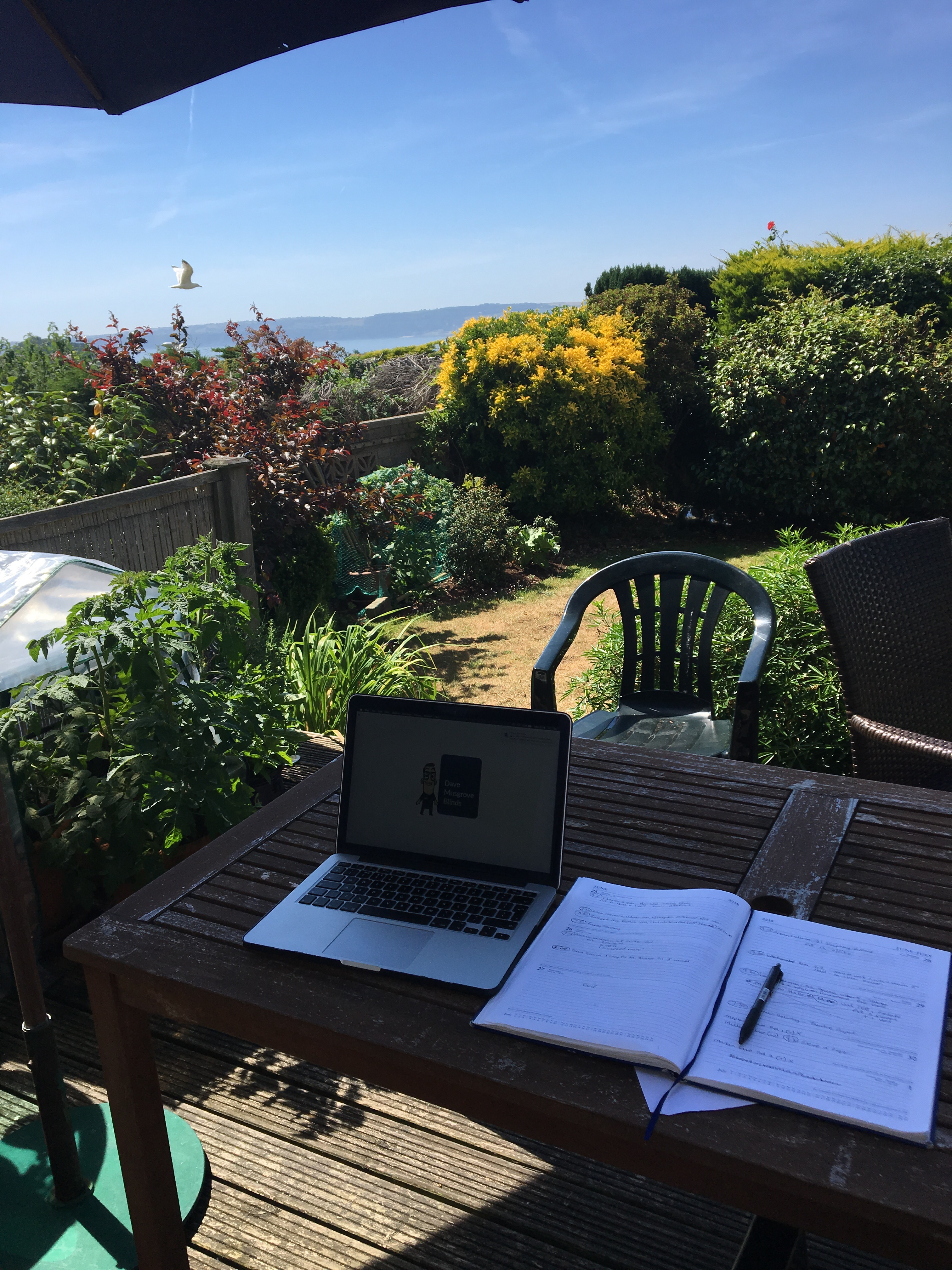 Lovely Summer, nice office! Featured Image